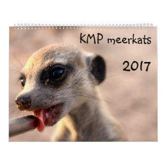KMP Meerkats - calendário 2017