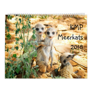 KMP Meerkats - calendário 2018