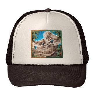 Koala e chapéu do bebê boné