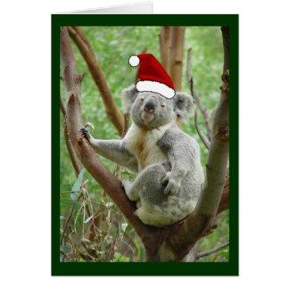 Koala no cartão de Natal da foto do chapéu do