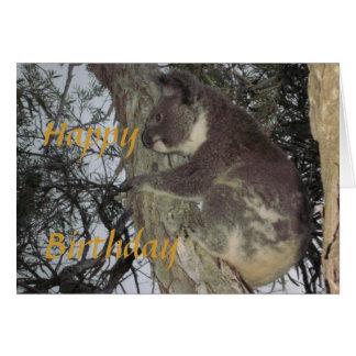 Koala que abraça o cartão de aniversário da árvore