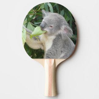 Koala que come a folha da goma raquete para ping pong