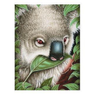 Koala que Munching um cartão da folha
