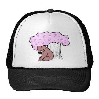 Koala triste boné