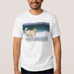Labradoodle - dia feliz na praia camisetas