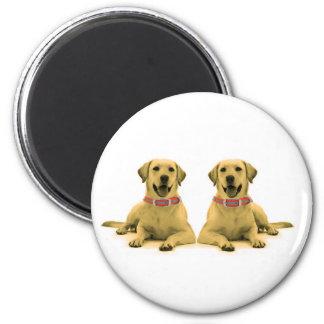 Labrador persegue o padrão da imagem, ímã redondo ímã redondo 5.08cm