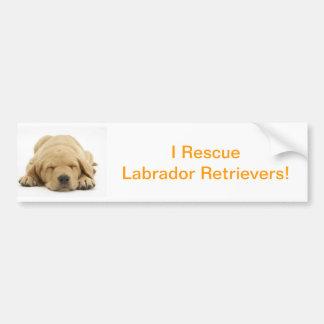 Labrador retriever amarelo adesivo para carro
