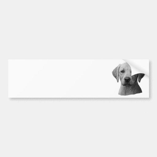Labrador retriever - imagem de Sylized - adicionam Adesivos