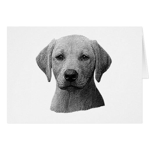 Labrador retriever - imagem de Sylized - adicionam Cartão