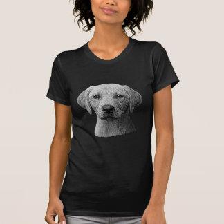 Labrador retriever - imagem de Sylized - adicionam Tshirt