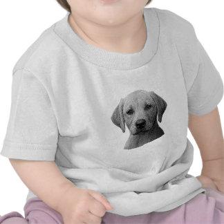 Labrador retriever - imagem de Sylized - adicionam T-shirt