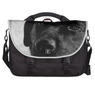 Labrador retriever preto maletas para laptop