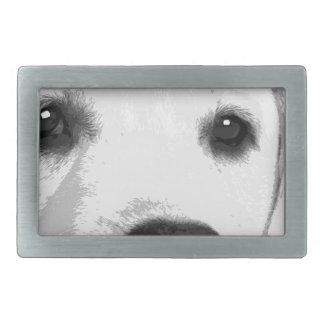 Labrador retriever preto e branco