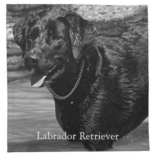 Labrador retriever preto na água guardanapo de pano