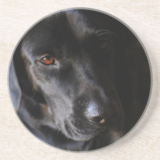 Labrador retriever preto porta copos de arenito