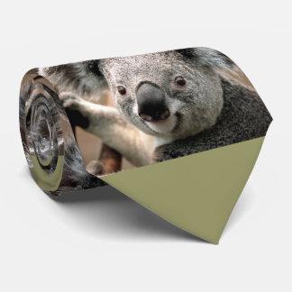 Laço bonito da foto do urso de Koala (fundo verde) Gravata