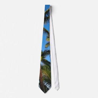 laço da palmeira gravata
