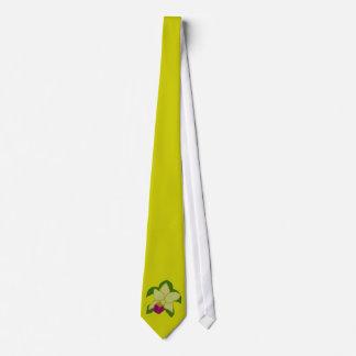 Laço esverdeado da tartaruga de mar da orquídea gravata
