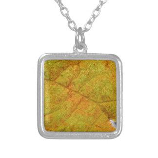 Lado de baixo da folha da uva colar banhado a prata