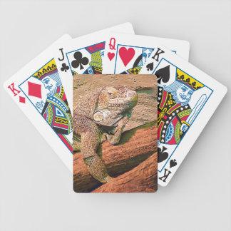 Lagarto de Loungin Baralho Para Poker