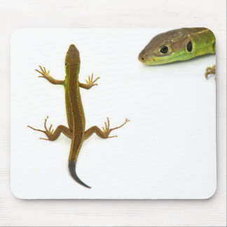 lagarto mouse pad