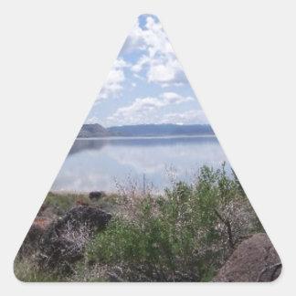 Lago Abert outback de Oregon Adesivo Triangular