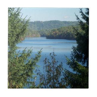 Lago e árvores azulejo quadrado pequeno