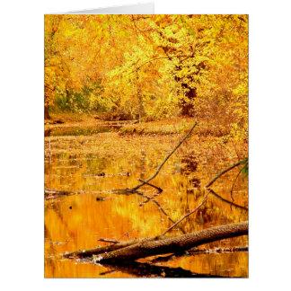 Lagoa refletindo amarela brilhante cartoes