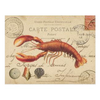 Lagosta do vintage e cartão dos seashells