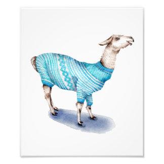 Lama da aguarela na camisola azul impressão de foto