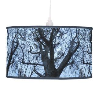 Lâmpada da fotografia da silhueta da árvore
