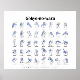 Lances de judo posters