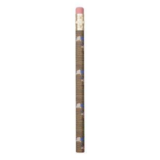 lápis bonito
