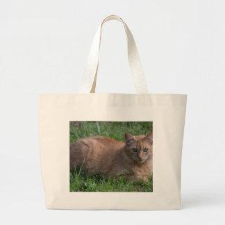 Laranja do gato de gato malhado bolsa para compra