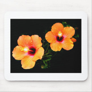 Laranja do hibiscus os presentes de Zazzle do MUSE Mouse Pads