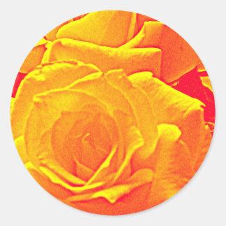 laranja fluorescente do rosa adesivo