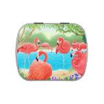 Lata tropical cor-de-rosa dos doces dos pássaros d
