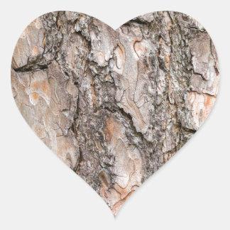 Latido do pinheiro escocês como o fundo adesivo coração