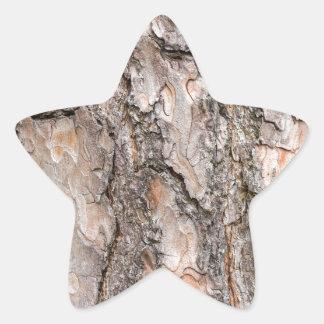 Latido do pinheiro escocês como o fundo adesivo estrela