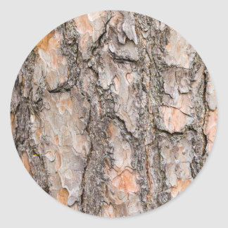Latido do pinheiro escocês como o fundo adesivo redondo