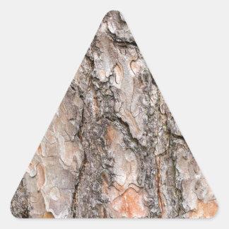 Latido do pinheiro escocês como o fundo adesivo triangular