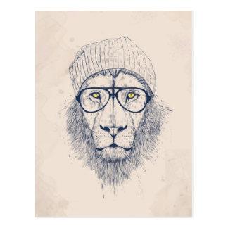 Leão legal cartão postal