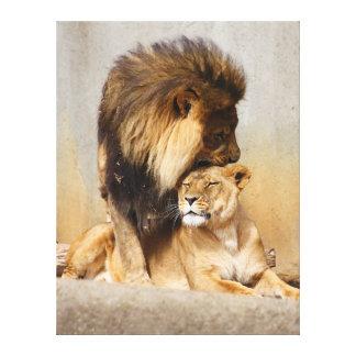 Leão masculino e fêmea no amor impressão em tela