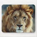 Leão Mousepad