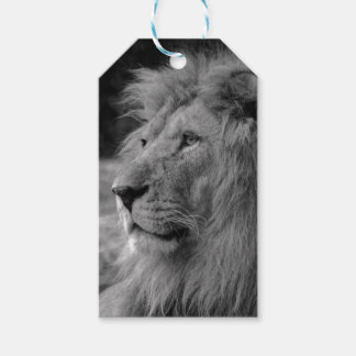 Leão preto & branco - animal selvagem etiqueta para presente