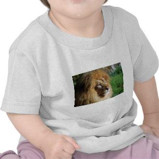 Leão Camisetas