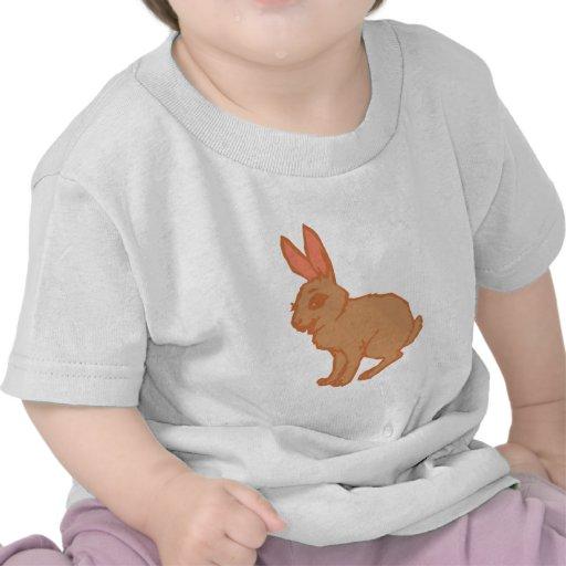Lebre coelho rabbit hare bunny