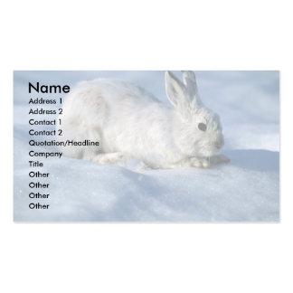 Lebre de variação/coelho de sapato de neve na neve cartão de visita