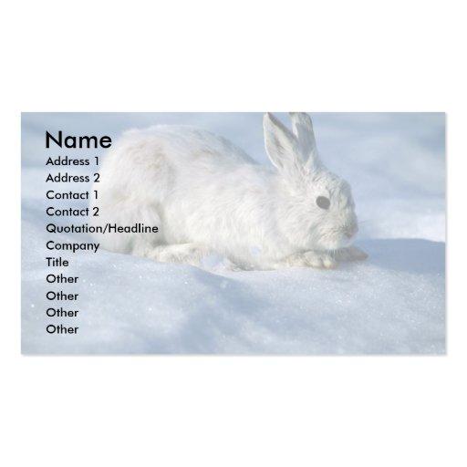 Lebre de variação/coelho de sapato de neve na neve cartões de visitas