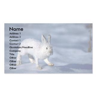 Lebre de variação/coelho de sapato de neve na neve modelo cartao de visita